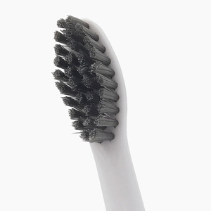 Charcoal Philips compatible toothbrush